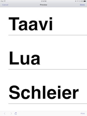 Taavi Lua Schleier with big letters